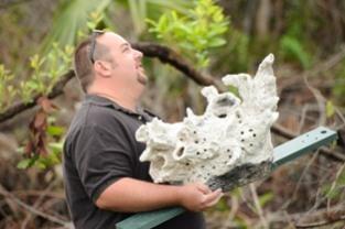 Jesse Etelson's Audubon Bird Habitat Project